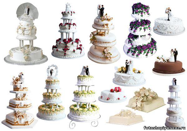 ... свадебный - Клипарт - Всё для фотошопа: www.adobe-photoshop.ru/load/klipart/kipart_svadebnij/1/26-1-0-1599
